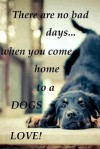 Dogs 10